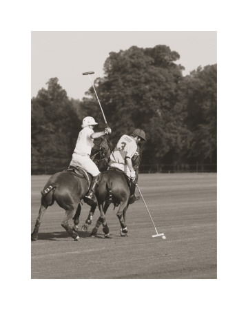 Polo In The Park II Art Print