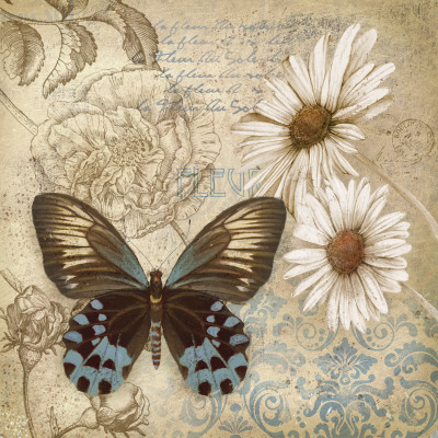 Butterfly Garden I Prints by Conrad Knutsen