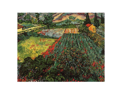 Field of Poppies, Saint-Remy, c.1889 Art Print