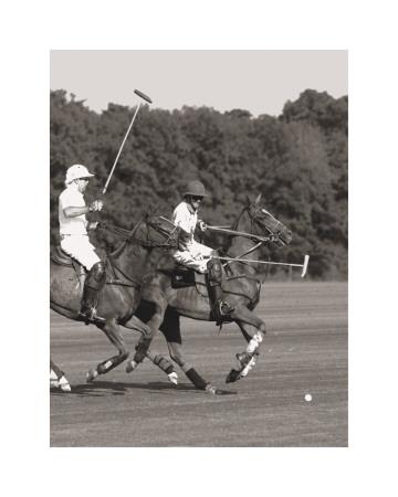 Polo In The Park IV Kunstdrucke von Ben Wood