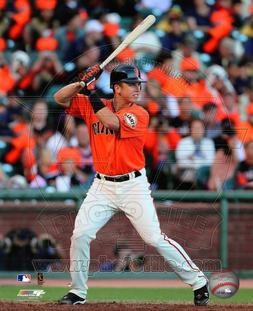 Buster Posey 2010 Action Photo