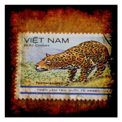 Panthera Stamp Prints by Jean-François Dupuis