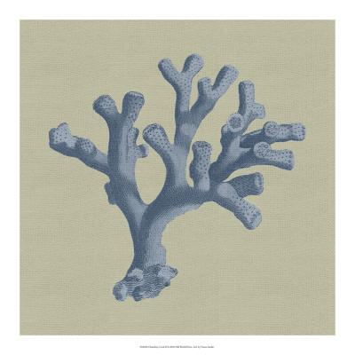 Chambray Coral II Giclee Print