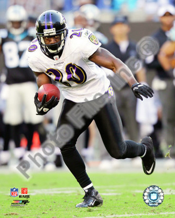 Ed Reed 2010 Action Photo