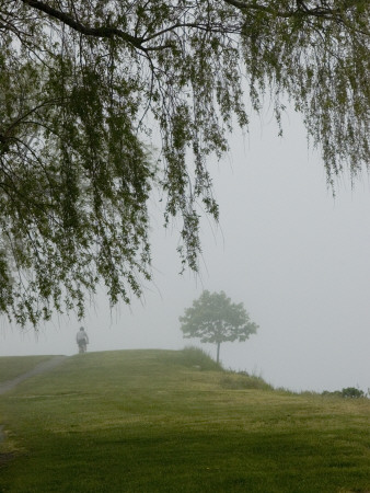 A Cyclist Pedals Through Fog Enveloping a Connecticut Shoreline Photographic Print by Todd Gipstein