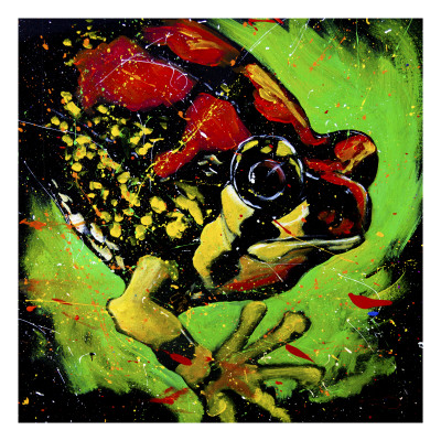 Rainbow Frog Posters
