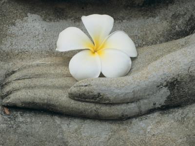 Buddha at Wat Yai Chai Khon Fotografisk tryk af Alison Wright
