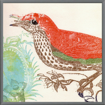 Red Bird Framed Canvas Print by Swan Papel