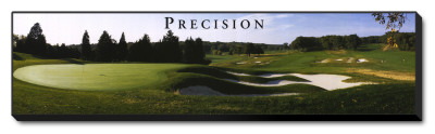 Precision: Golf Stretched Canvas Print by Bruce Curtis