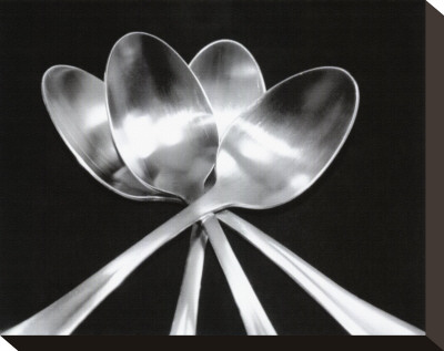 Spoons Stretched Canvas Print by Mike Feeley