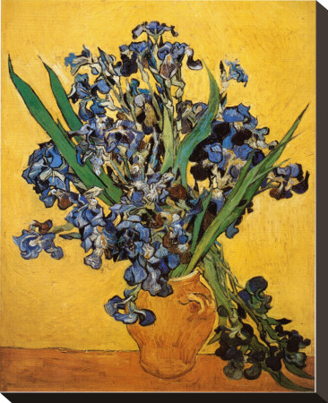 Vase of Irises Against a Yellow Background, c.1890 Stretched Canvas Print