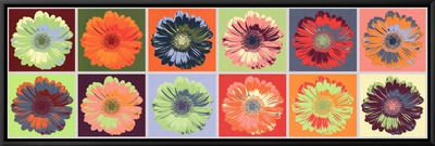 Gerbera Spectrum Framed Canvas Print