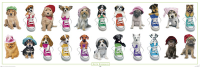 Keith Kimberlin - dogs with hats and sneakers Print
