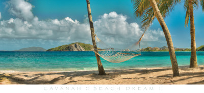 Beach Dream I Affischer av Doug Cavanah