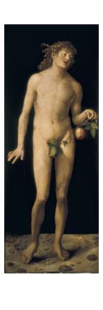 Adam Prints by Albrecht Dürer