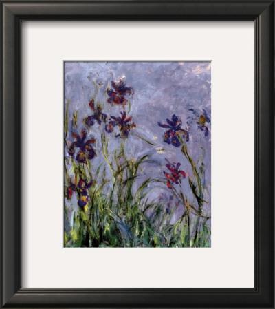 Irises Poster by Claude Monet