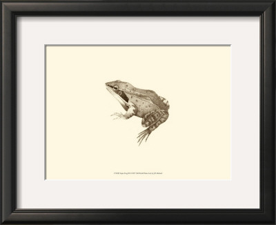 Sepia Frog III Posters by J. H. Richard