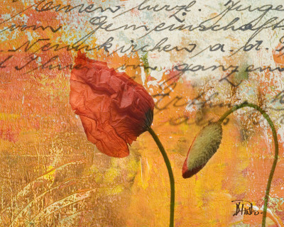Poppies Composition II Prints by Patricia Quintero-Pinto