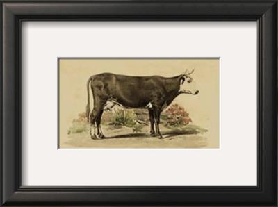 Antique Cow IV Prints by Julian Bien