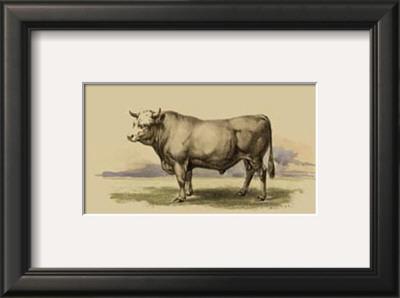 Antique Cow I Print by Julian Bien