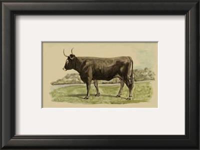 Antique Cow III Posters by Julian Bien