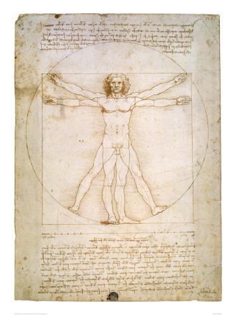 Den Vitruvianske Mand, ca. 1492 Kunsttryk