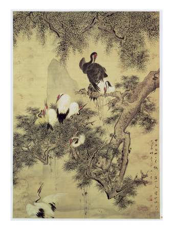 Eight Red-Crested Herons in a Pine Tree, 1754 Premium Giclee Print by Hua Yan