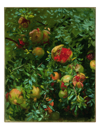 Pomegranates, Majorca, C.1908 Premium Giclee Print by John Singer Sargent