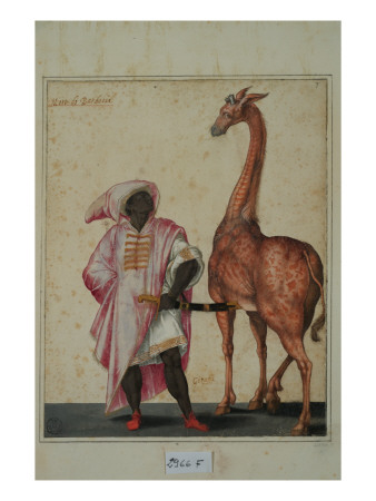 Berber with a Giraffe Giclee Print