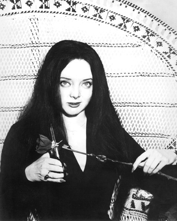 Carolyn Jones - The Addams Family Photo