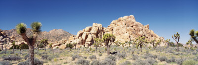 Rock Formation in a Arid Landscape, Joshua Tree National Monument, California, USA Autocollant mural