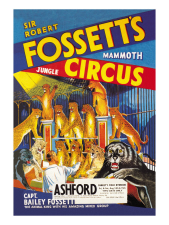 Sir Robert Fossett's Mammoth Jungle Circus Vinilos decorativos