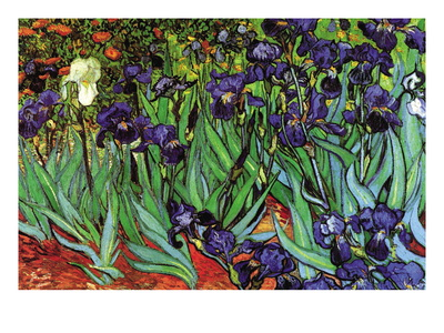 Irises Wall Decal by Vincent van Gogh