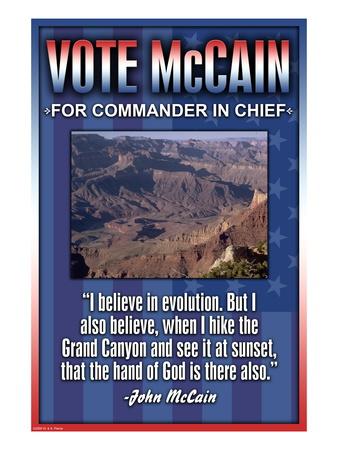 McCain on Evolution Wall Decal
