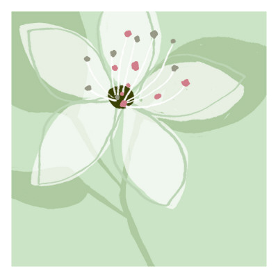 Soft Floral VI Wall Decal