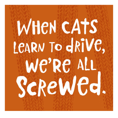 When Cats Learn to Drive Wall Decal