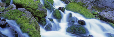 Waterfall Flowing over Mossy Rocks, Periodic Spring, Bridger-Teton National Forest, Wyoming, USA Wall Decal by  Panoramic Images