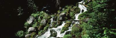 Waterfall at Grant Park, Mt. Rainier National Park, Washington, USA Wall Decal by  Panoramic Images