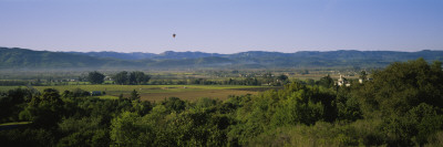 Hot Air Balloon Flying over a Field, Napa Valley, Yountville, California, USA Wall Decal by  Panoramic Images
