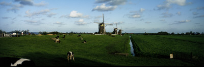 Windmills, Netherlands Wall Decal by  Panoramic Images