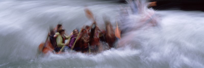 People White Water Rafting, Snake River, Jackson, Wyoming, USA Wall Decal by  Panoramic Images