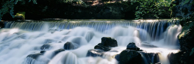 Waterfall in a Forest, Aberfeldy Birks, Perthshire, Scotland Wall Decal by  Panoramic Images