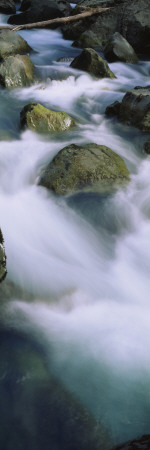 Skokomish River, Olympic National Park, Washington, USA Wall Decal by  Panoramic Images