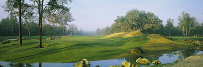 Stream on a Golf Course, Haile Plantation, Gainesville, Florida, USA Wall Decal by  Panoramic Images
