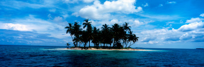 Palm Trees on an Island, San Blas Islands, Panama Wall Decal