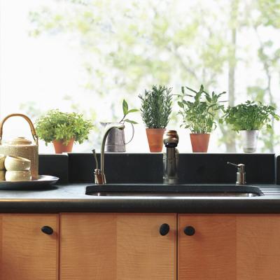 Aromatic Herbs Window Decal Sticker Window Decal