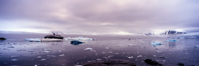 Cruise Ship in the Sea, Antarctica Wall Decal by  Panoramic Images
