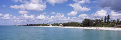 Trees on the Beach, Gulf of Mexico, Naples, Collier County, Florida, USA Wall Decal by  Panoramic Images