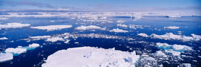 Pack Ice in the Sea, Ross Sea, Antarctica Wall Decal by  Panoramic Images