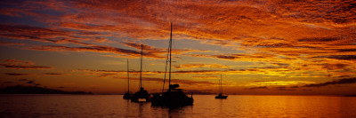Sailboats in the Sea, Tahiti, French Polynesia Wall Decal by  Panoramic Images